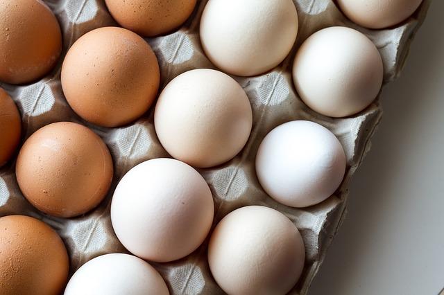 egg yolk 2