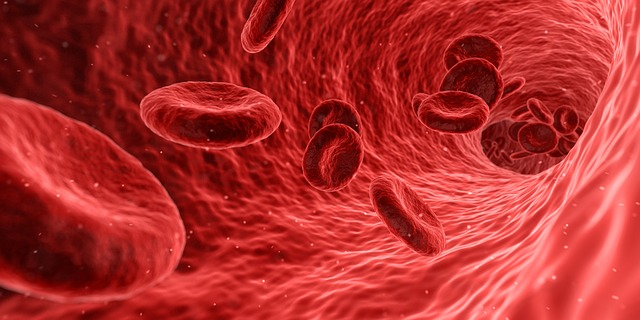 causes of anemia 1